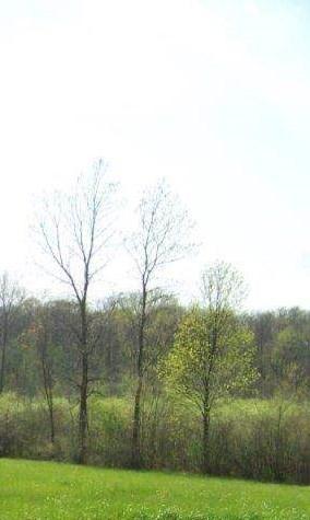 2625 S Crane Pond, Marion, IN 46952 (MLS #201422470) :: Parker Team