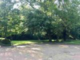 8 Crane Park - Photo 6