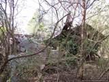 Stump Ridge Rd - Photo 48