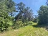000 Castalian Springs - Photo 13