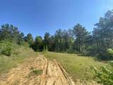 000 Castalian Springs - Photo 14