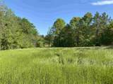000 Castalian Springs - Photo 16