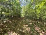 000 Castalian Springs - Photo 3