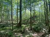 000 Castalian Springs - Photo 6