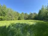 000 Castalian Springs - Photo 8