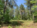 Prospect Cedar Lane - Photo 14