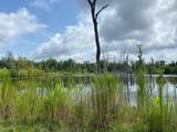 0 Old Port Gibson Rd - Photo 6