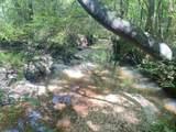 Rials Creek Rd - Photo 16