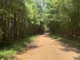 Rials Creek Rd - Photo 26