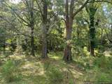 441 Foster Rd - Photo 4