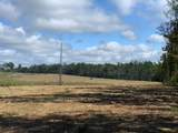 TRACT 6 Coal Bluff Rd - Photo 1