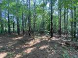 2932 Old Pickens Road - Photo 5