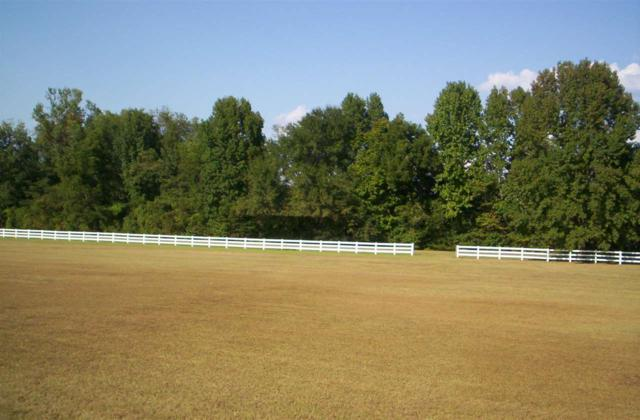 1814 Cox Ferry Rd, Bolton, MS 39041 (MLS #279466) :: RE/MAX Alliance