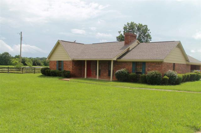 369 Hart Rd, Canton, MS 39046 (MLS #298637) :: RE/MAX Alliance