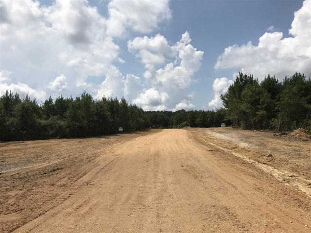1100G Hwy 84, Brookhaven, MS 39601 (MLS #300578) :: RE/MAX Alliance