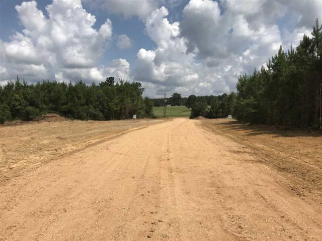 1100F Hwy 84, Brookhaven, MS 39601 (MLS #300579) :: RE/MAX Alliance