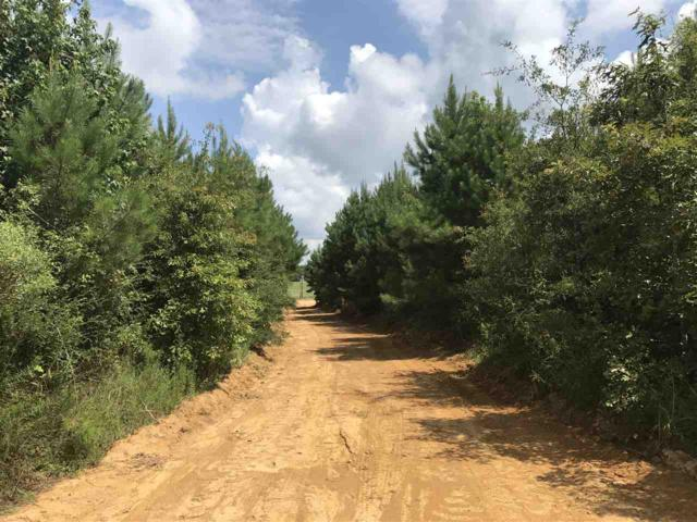 1100E Hwy 84, Brookhaven, MS 39601 (MLS #300581) :: RE/MAX Alliance