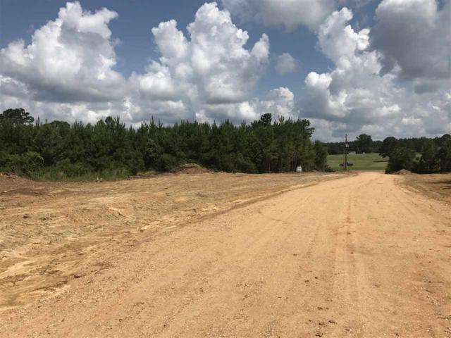 1100D Hwy 84, Brookhaven, MS 39601 (MLS #300583) :: RE/MAX Alliance