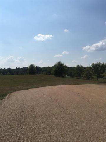 Lot 12 Northlake Cir Lot 12, Jackson, MS 39211 (MLS #301512) :: Mississippi United Realty