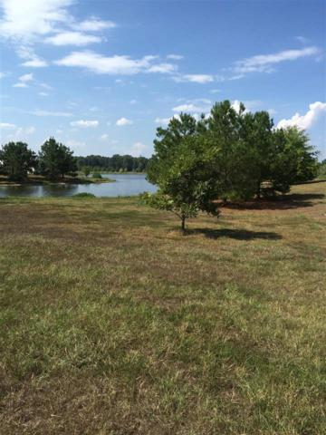 Lot 3 Meadowbrook Lake Dr Lot 3, Jackson, MS 39211 (MLS #301513) :: Mississippi United Realty