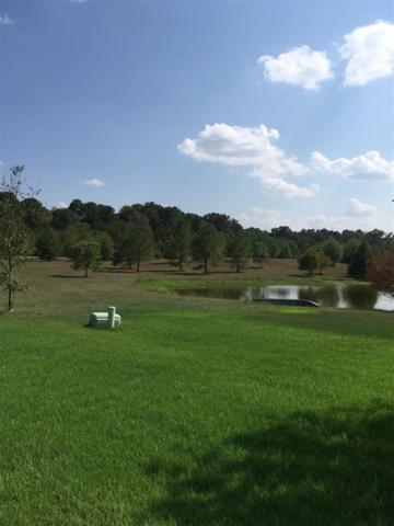 Lot 7 Meadowbrook Lake Dr Lot 7, Jackson, MS 39211 (MLS #301514) :: Mississippi United Realty