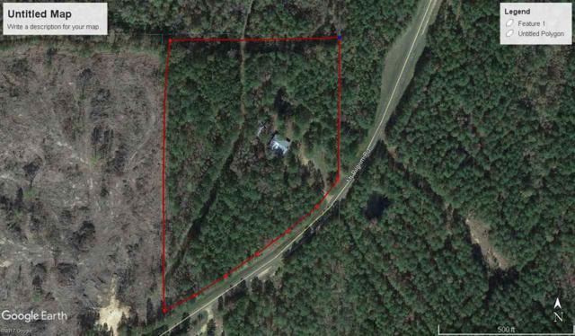 13 Mt Pilgrim Rd, Canton, MS 39046 (MLS #304398) :: RE/MAX Alliance
