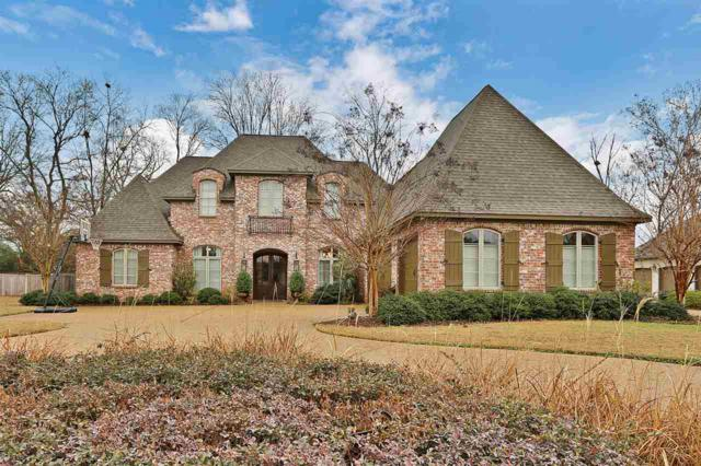 420 St. Ives Dr, Madison, MS 39110 (MLS #304491) :: RE/MAX Alliance