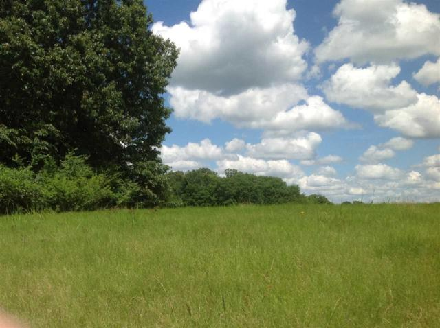 Williamswood Dr 18 & 19, Raymond, MS 39154 (MLS #305634) :: RE/MAX Alliance