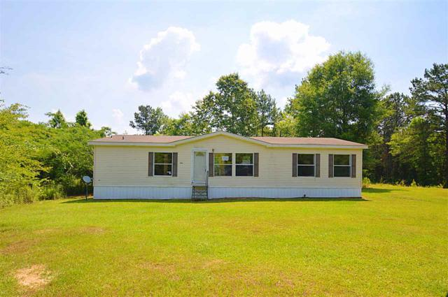 2069 Odom Rd, Hazlehurst, MS 39083 (MLS #309107) :: RE/MAX Alliance