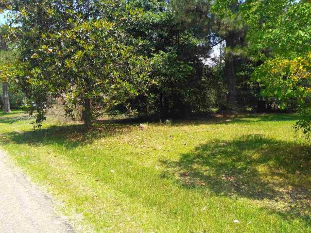 0 Wilson Welch Rd, Mendenhall, MS 39114 (MLS #309115) :: RE/MAX Alliance