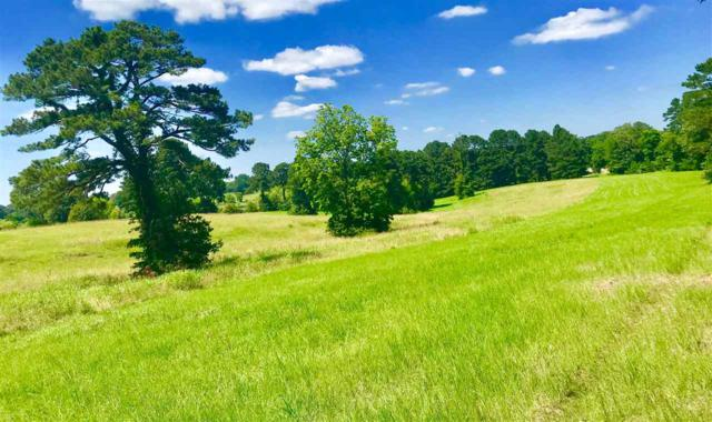Hwy 22 Lot 14, Edwards, MS 39066 (MLS #309738) :: Mississippi United Realty