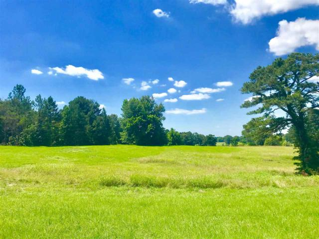 Hwy 22 Lot 15, Edwards, MS 39066 (MLS #309739) :: Mississippi United Realty