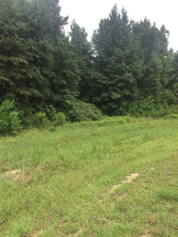Lot 8 Green Trace Cv Lot 8 Bridgewat, Ridgeland, MS 39157 (MLS #311955) :: RE/MAX Alliance