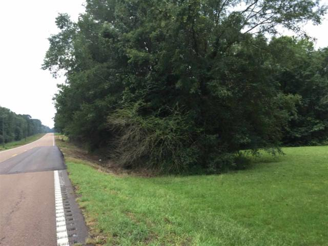 Hwy 35 S #0, Forest, MS 39074 (MLS #312714) :: RE/MAX Alliance