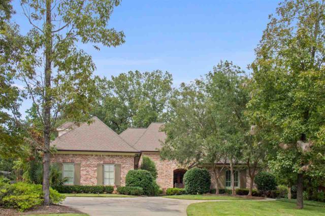 118 Hidden Heights, Ridgeland, MS 39157 (MLS #312964) :: RE/MAX Alliance