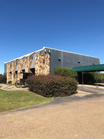 116 Commercial Parkway, Canton, MS 39046 (MLS #313886) :: RE/MAX Alliance