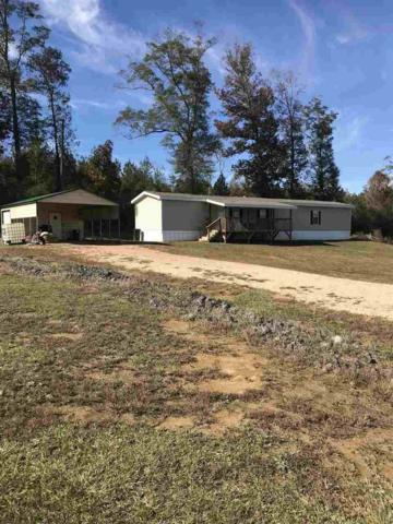1988 Hwy 43 South Hwy, Pelahatchie, MS 39145 (MLS #314756) :: RE/MAX Alliance