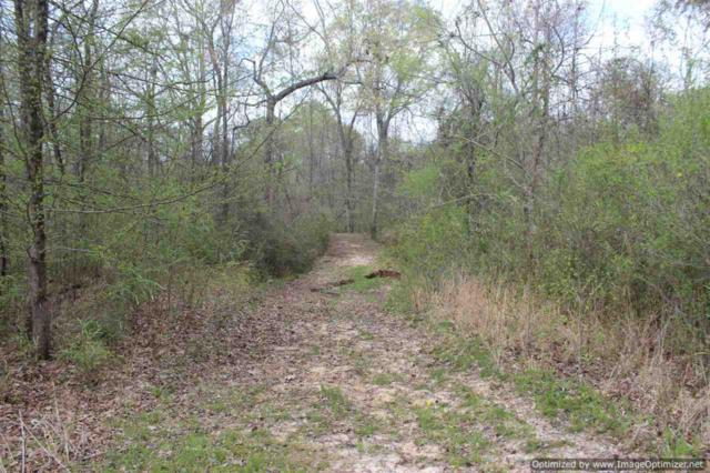 2914 Highway 3 Hwy, Satartia, MS 39162 (MLS #315240) :: RE/MAX Alliance