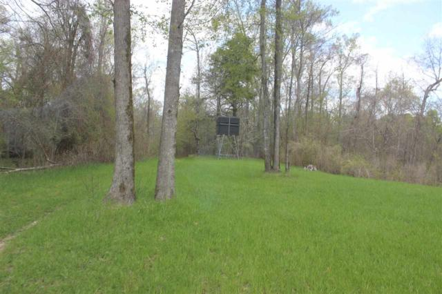 5747 Russellville Rd., Bentonia, MS 39040 (MLS #315242) :: RE/MAX Alliance