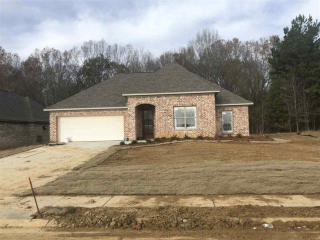 140 Shore View Dr, Madison, MS 39110 (MLS #315406) :: RE/MAX Alliance