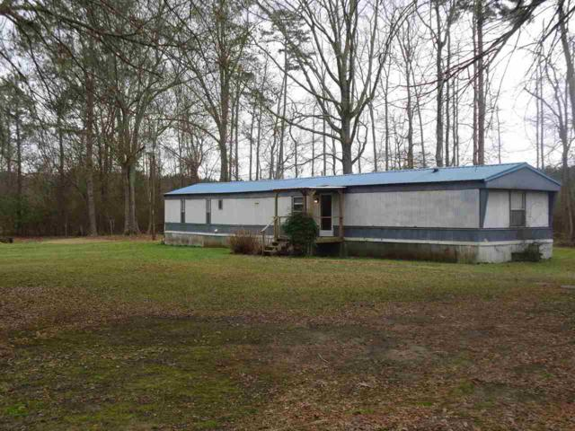 157 Maple St, Florence, MS 39073 (MLS #316008) :: RE/MAX Alliance