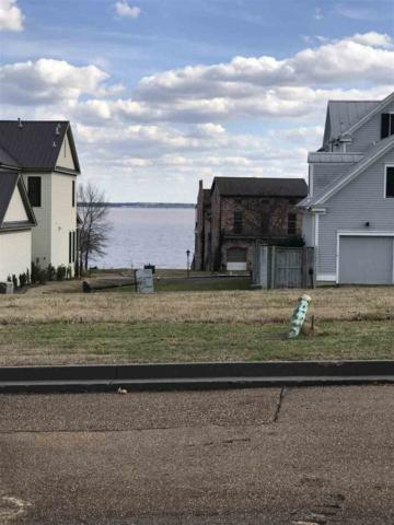 Lot 238 Lemoyne Blvd, Madison, MS 39110 (MLS #316313) :: RE/MAX Alliance