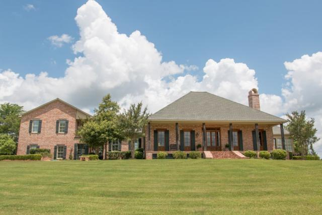 234 Chapel Hill Rd, Flora, MS 39071 (MLS #316318) :: Mississippi United Realty