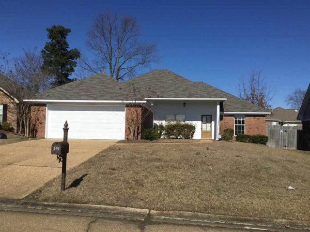 379 Kings Ridge Cir, Brandon, MS 39047 (MLS #316955) :: RE/MAX Alliance