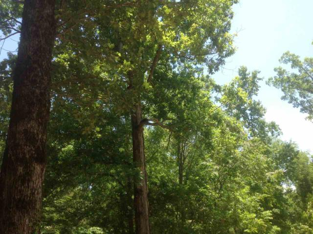 0 Sleepy Hollow Rd #17, Terry, MS 39170 (MLS #316966) :: RE/MAX Alliance