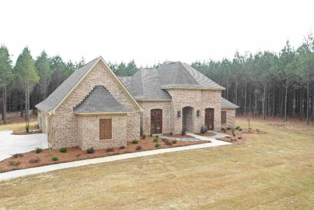 1006 Limerick Ln, Brandon, MS 39047 (MLS #317355) :: RE/MAX Alliance