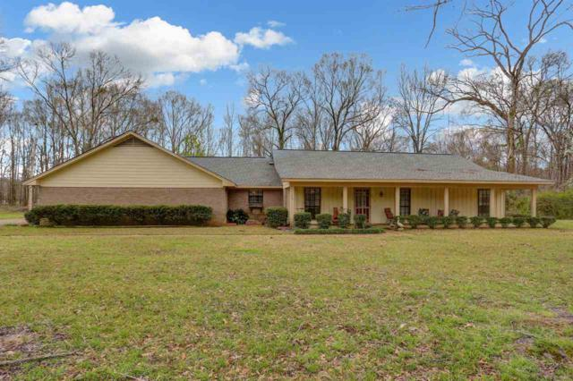 713 S Springlake Cir, Terry, MS 39170 (MLS #317381) :: RE/MAX Alliance