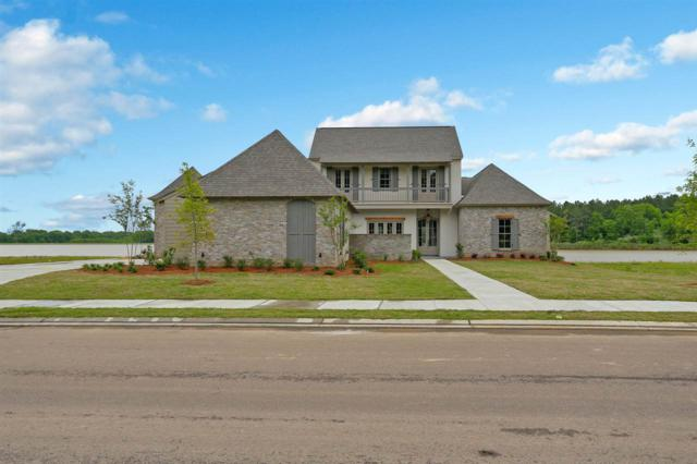 154 Reunion Dr, Madison, MS 39110 (MLS #318597) :: RE/MAX Alliance