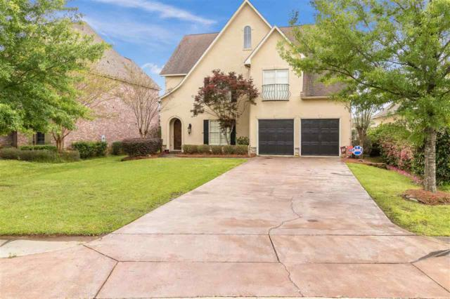 143 Vinings Dr, Madison, MS 39110 (MLS #318656) :: RE/MAX Alliance