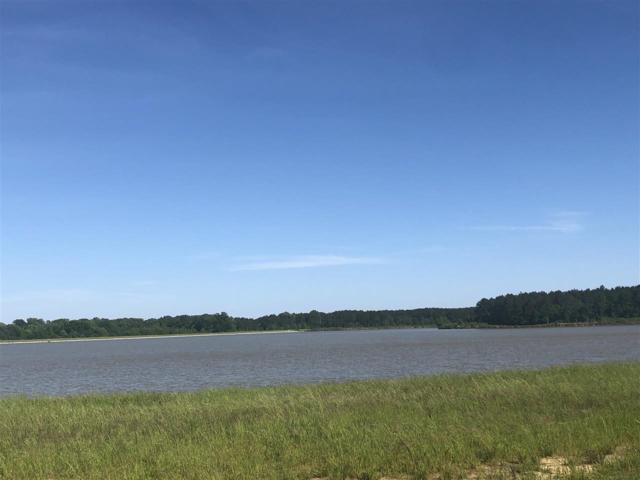 106 Woodvale Cove W-10, Madison, MS 39110 (MLS #319344) :: RE/MAX Alliance